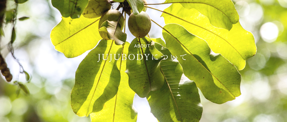 about JUJUBODYについて