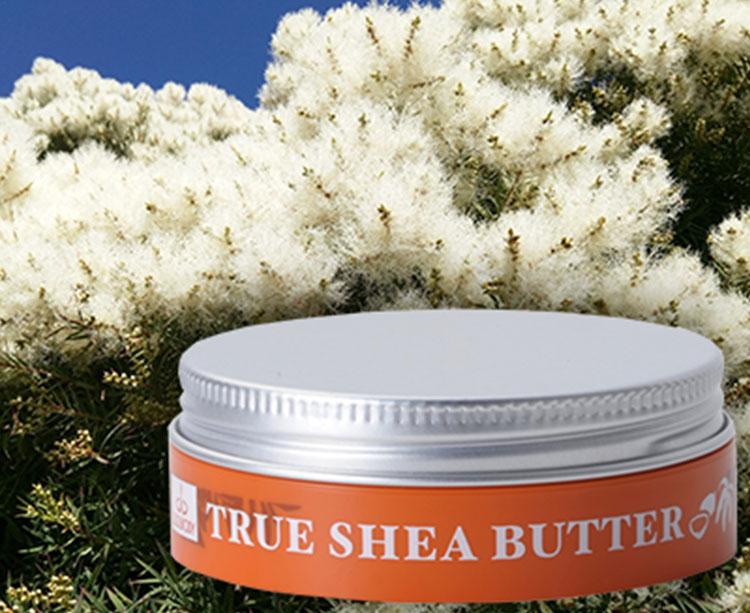 True Shea Butter ティートリー
