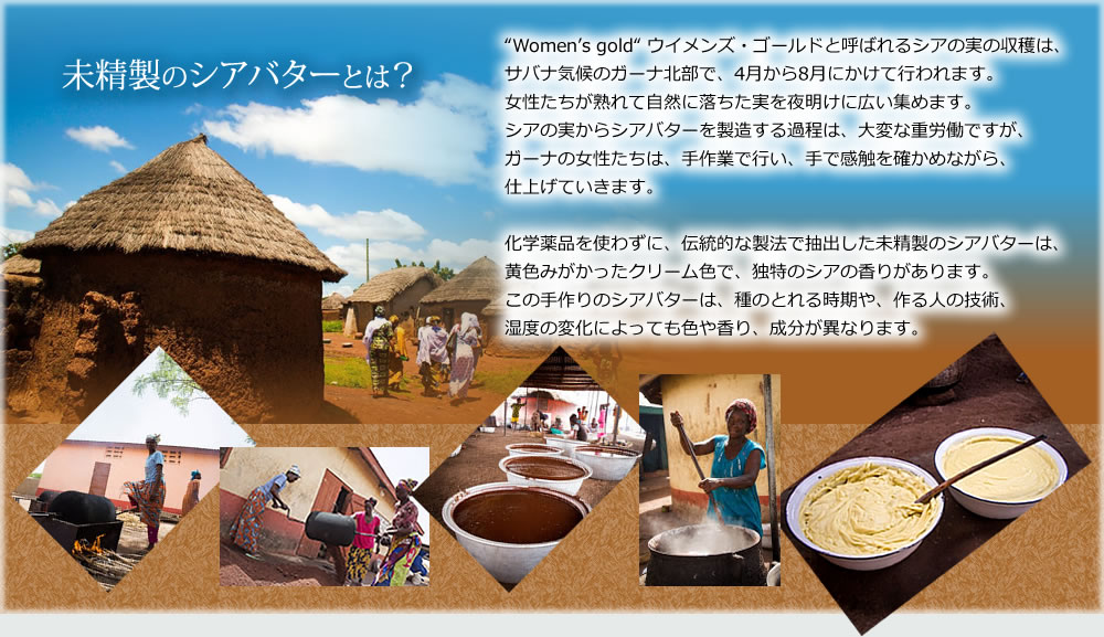 """未精製のシアバターとは?     """"Women's gold"""" ウイメンズ・ゴールドと呼ばれるシアの実の収穫は、     サバナ気候のガーナ北部で、4月から8月にかけて行われます。     女性たちが熟れて自然に落ちた実を夜明けに広い集めます。     シアの実からシアバターを製造する過程は、大変な重労働ですが、     ガーナの女性たちは、手作業で行い、手で感触を確かめながら、     仕上げていきます。      化学薬品を使わずに、伝統的な製法で抽出した未精製のシアバターは、     黄色みがかったクリーム色で、独特のシアの香りがあります。     この手作りのシアバターは、種のとれる時期や、作る人の技術、     湿度の変化によっても色や香り、成分が異なります。"""