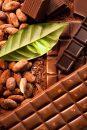 カカオの良さが活きたチョコレートを選ぶなら